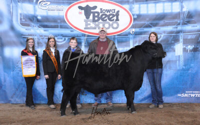 Angus Res Bull _0163